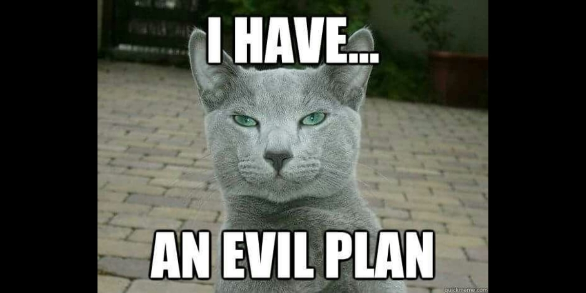 "A smug cat meme with text that reads, ""I have...an evil plan,"" designed to depict Dr. Barry Duncan's idea to get the ORS and SRS psychometrically validated."