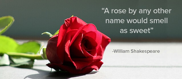 rose-by-any-name
